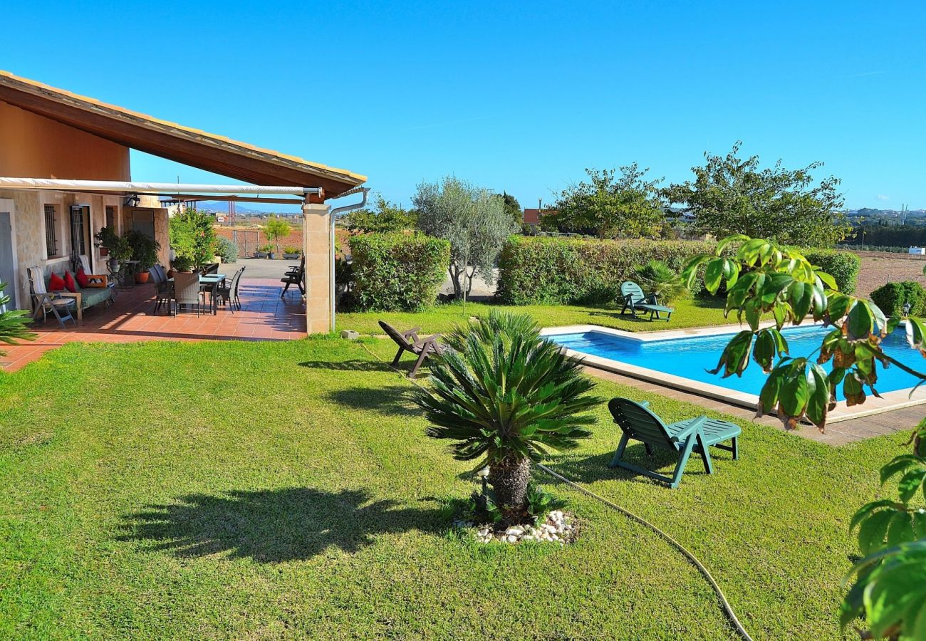 Alquiler de apartamento en Mallorca Alquiler privado Finca Mallorca