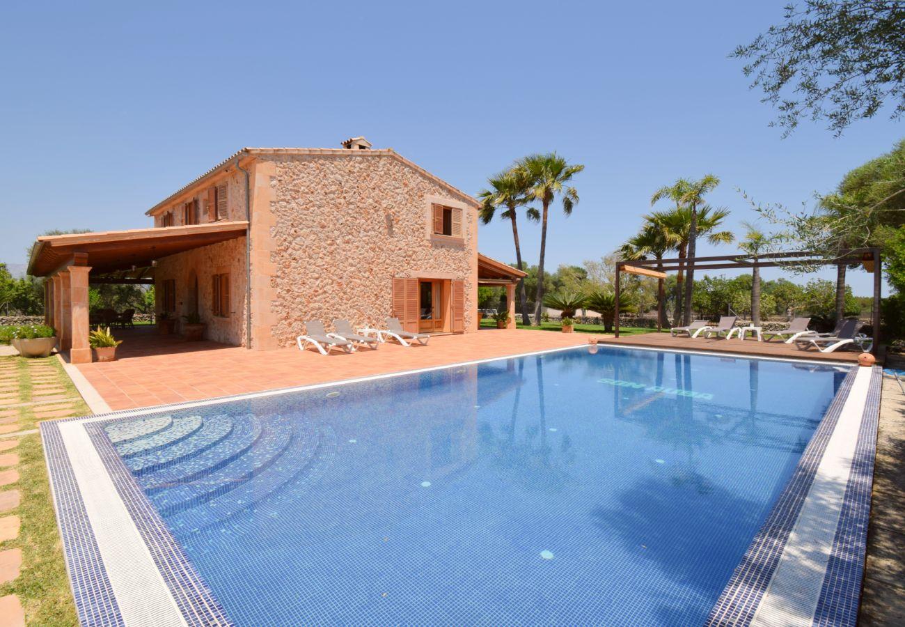 piscina, vacaciones, tranquilidad, verano