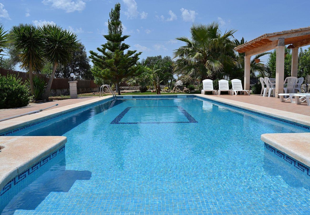 La finca tiene un gran jardín donde se encuentra una piscina