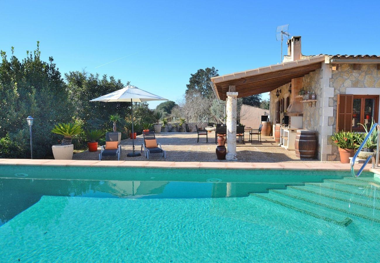 piscina, vacaciones, casa, verano, finca, naturaleza
