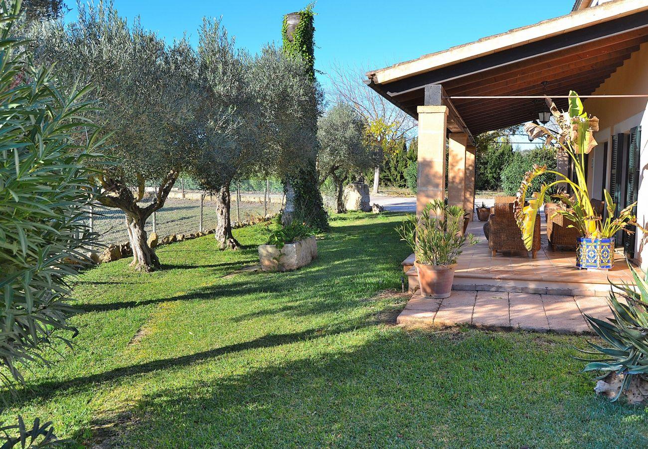 Villa en Santa Margalida - Castellet Finca Santa Margalida 120