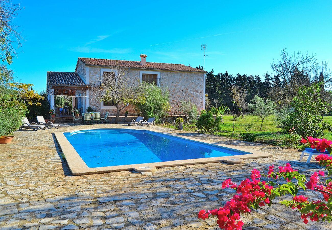 casa con piscina y hamacas perfecta para el verano