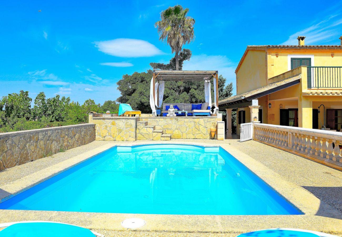 piscina, naturaleza, tranquilidad, vacaciones