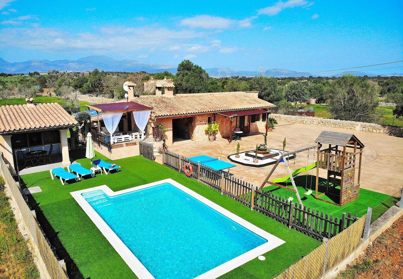 piscina, parque, granja, vacaciones, verano