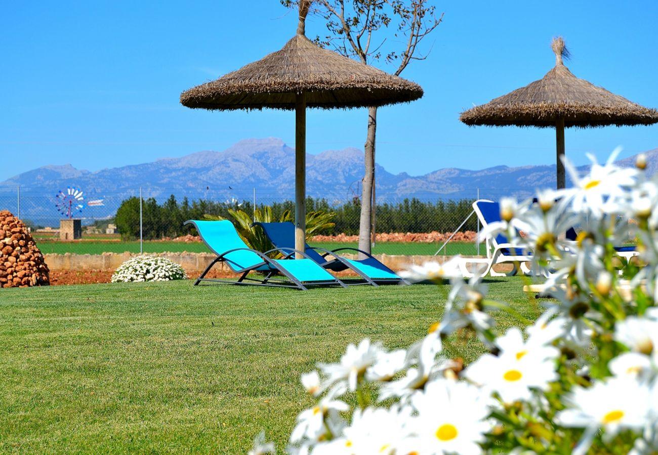 Desde 100 € por día puede alquilar su finca en Mallorca