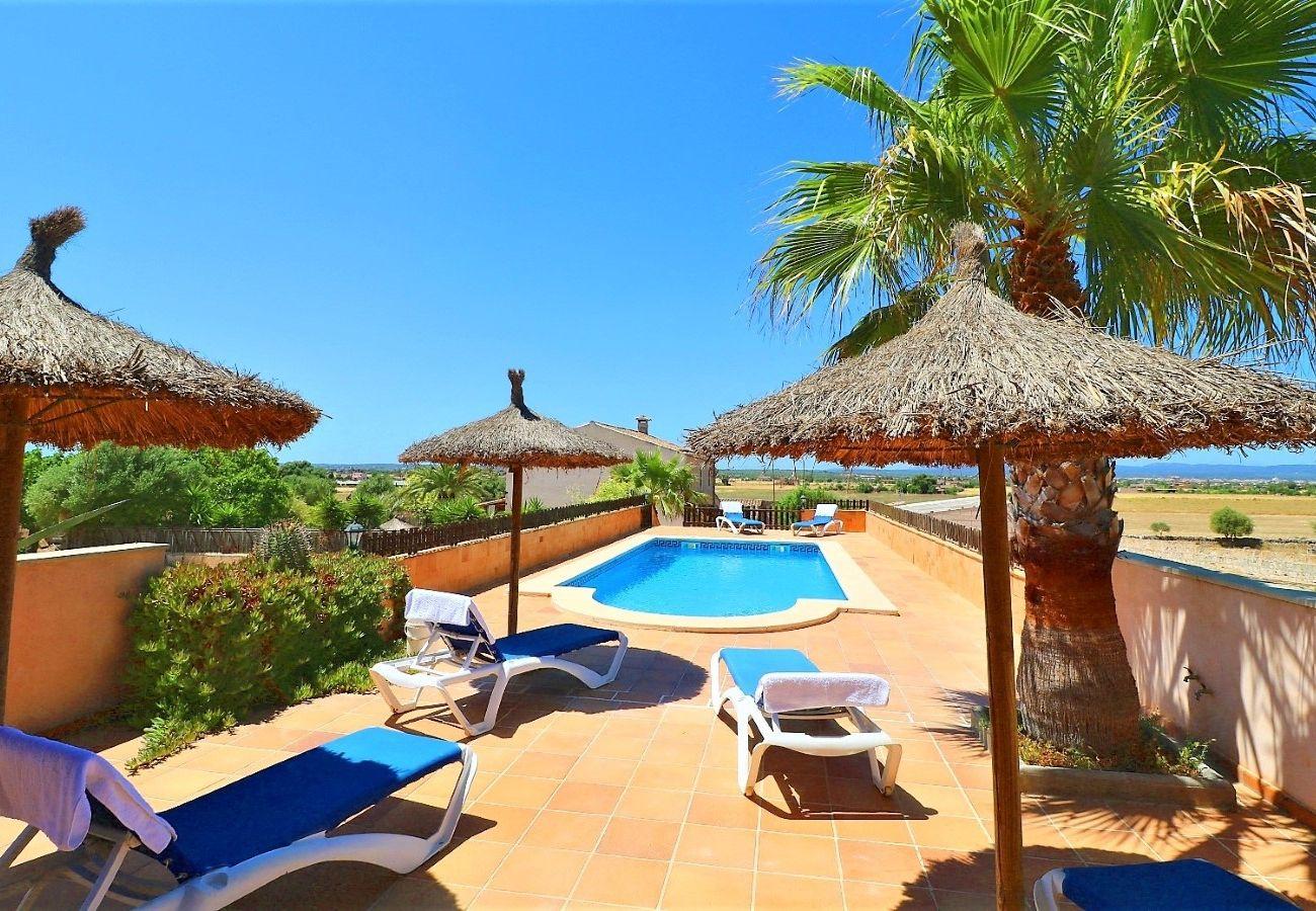 piscina, naturaleza, vacaciones, verano