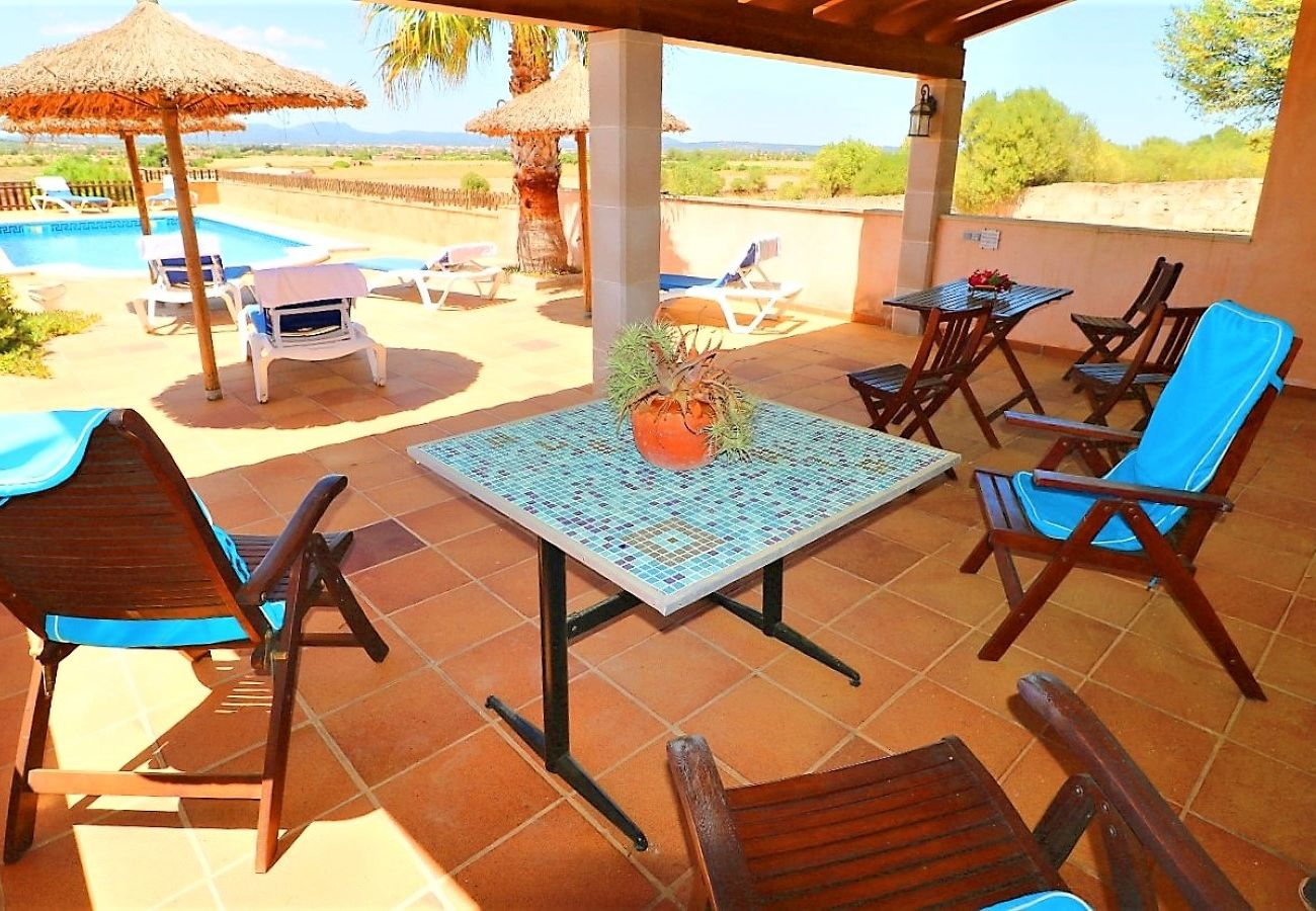 piscina, naturaleza, vacaciones, verano, terraza