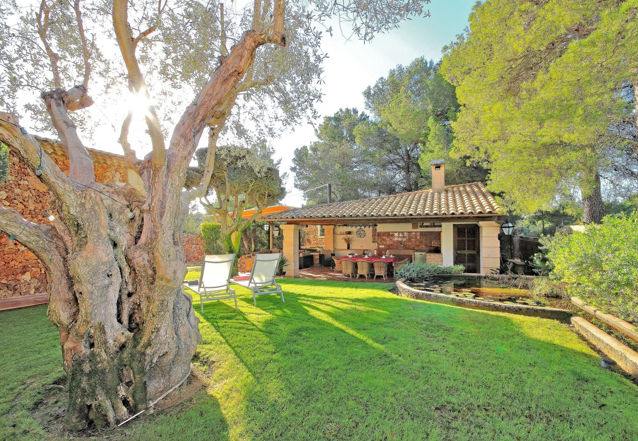 Casa en Costa de los Pinos - Can Tomeu Villa Costa de los Pinos Mallorca 232