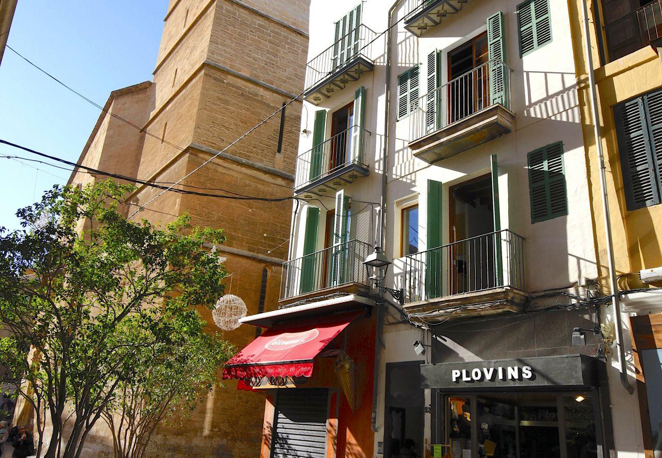 Apartamento en Palma de Mallorca - Sant Miquel Homes Albufera