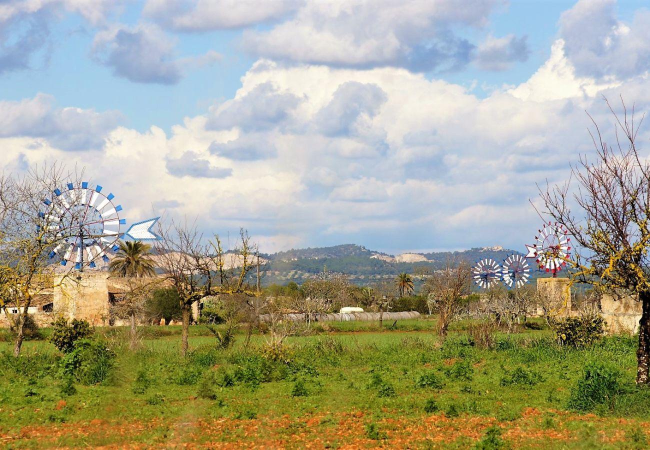 Finca en Campos - Can Olivaret villa Campos 419