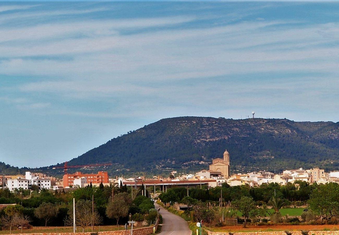 Finca en Llucmajor - Son Antem Finca Mallorca 420
