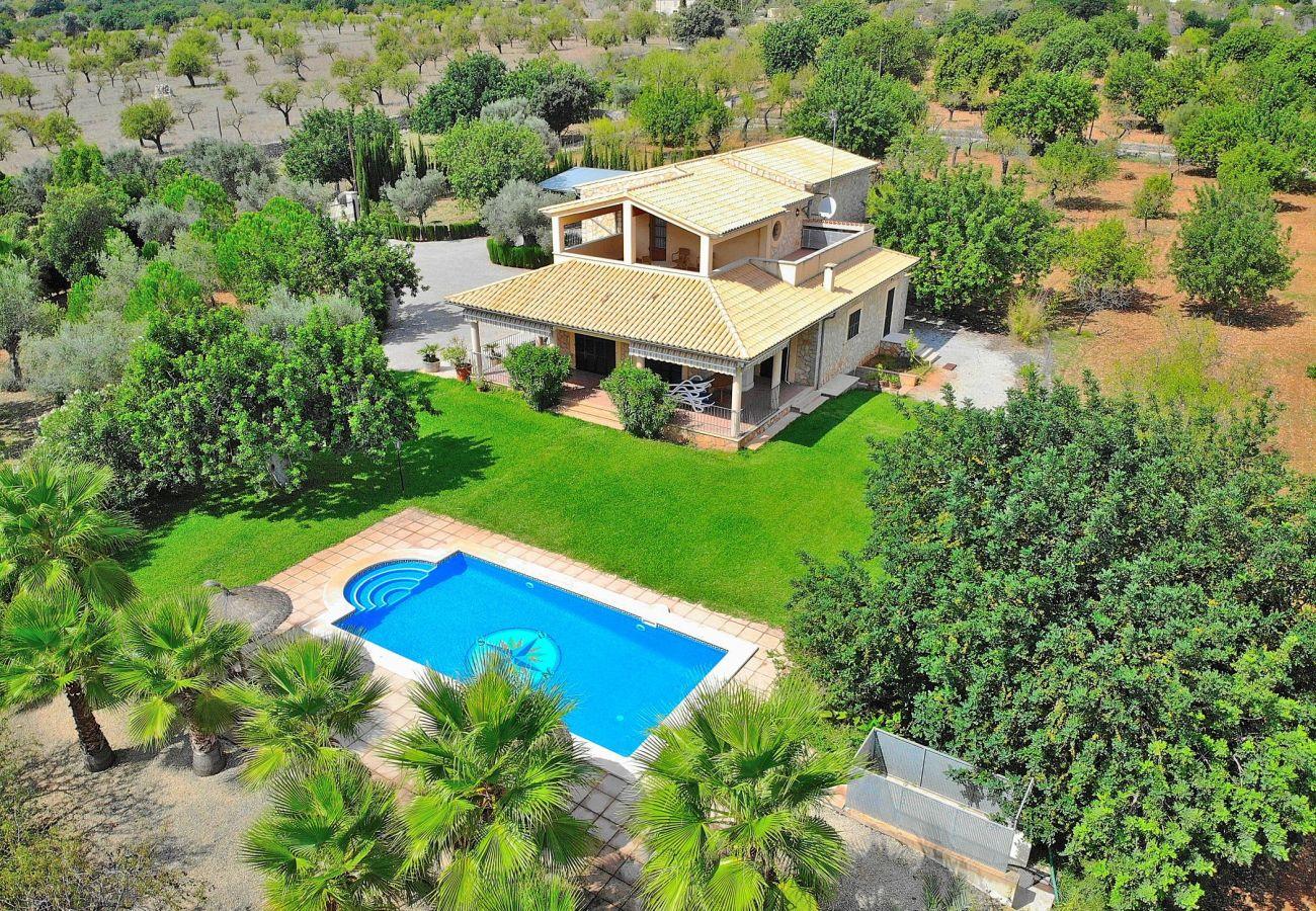 piscina, naturaleza, vacaciones, tranquilidad, verano