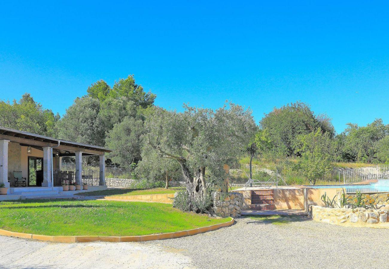Finca en Lloseta - Ses Oliveres villa Selva 016