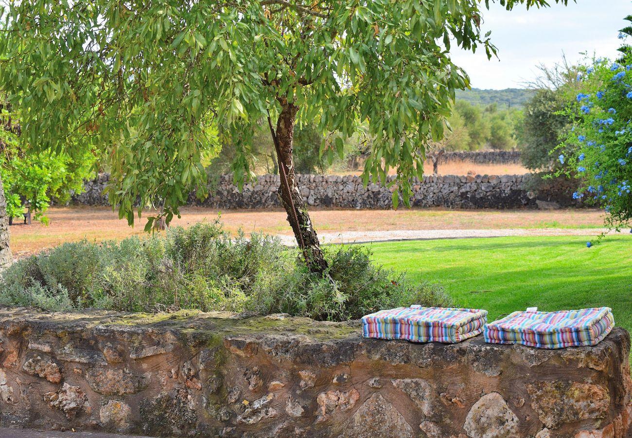 Finca en Muro - Casa Núria Villa Muro 019