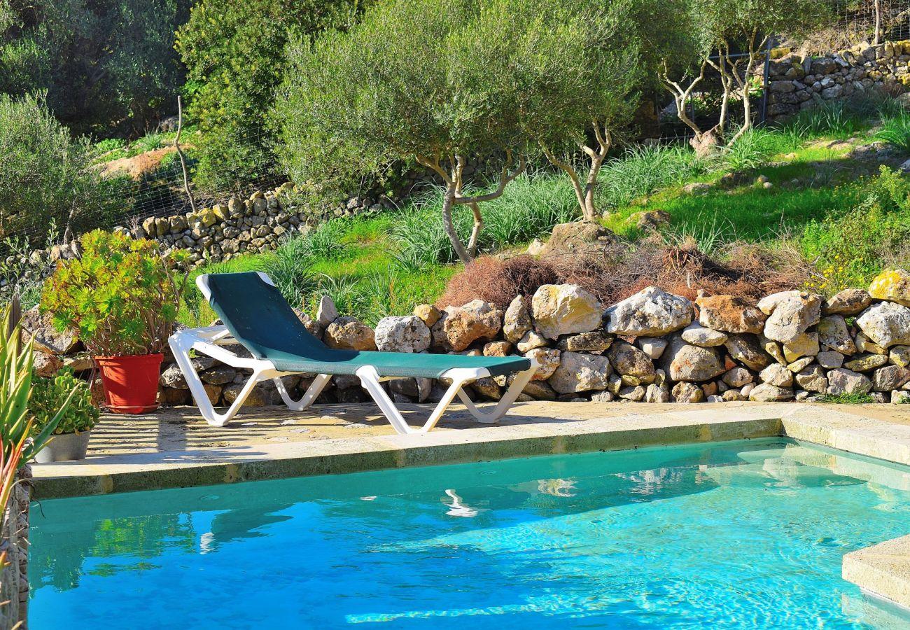 Preciosa foto de la piscina de la villa en Alcudia