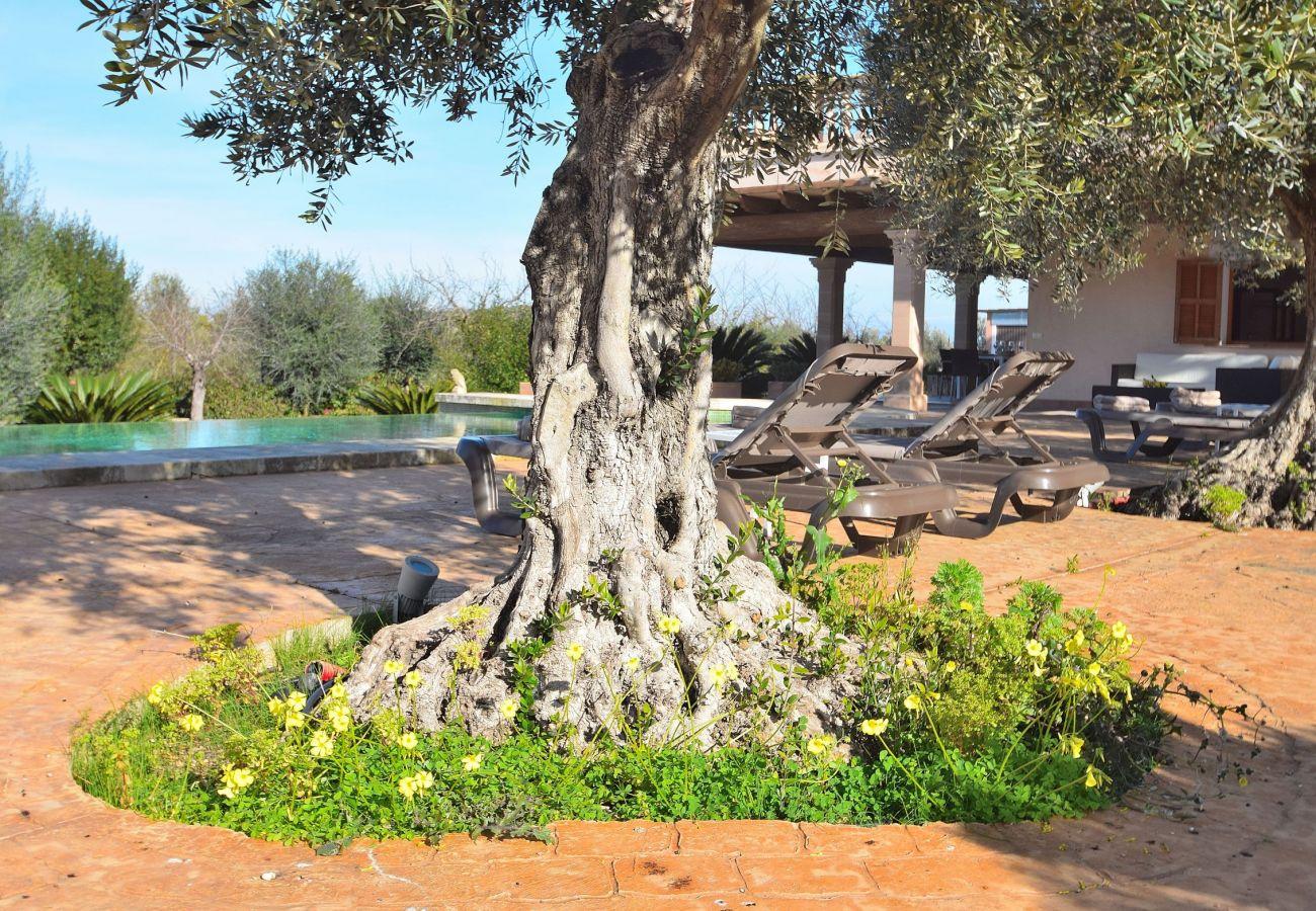 Foto de la piscina y de la villa
