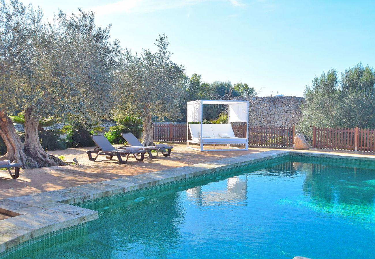 Foto de la piscina de la villa en Sineu