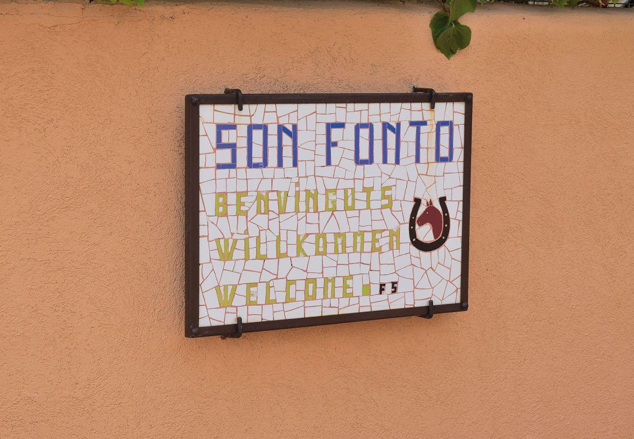 Finca en Manacor - Finca Son Fonto Manacor 097