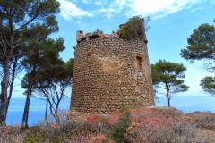 Sa-Pedrissa-Turm-auf-Mallorca