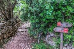 Die Route  Valldemossa nach Deia ist sehr gut markiert