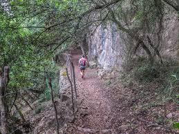 Ein Teil vom Weg wandern mallorca valldemossa nach deia