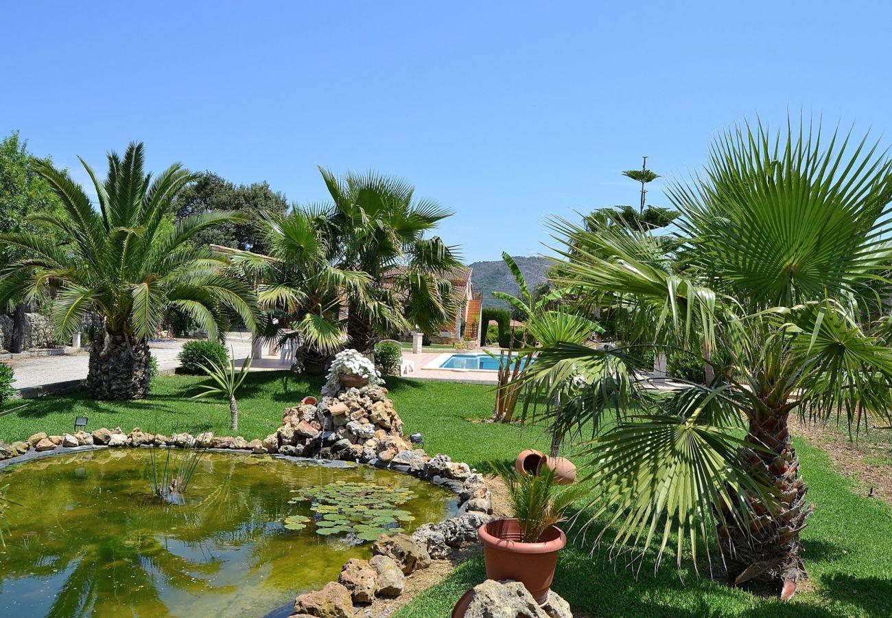 Die Finca besteht aus einem schönen Garten mit Pool