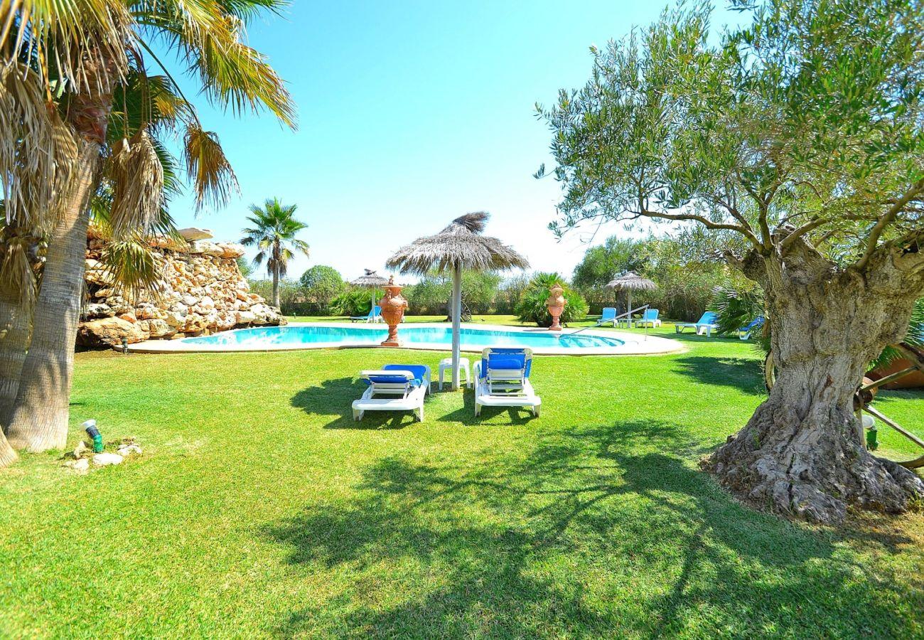 Die luxuriöse Finca befindet sich in Can Picafort-Mallorca und verfügt über einen Pool