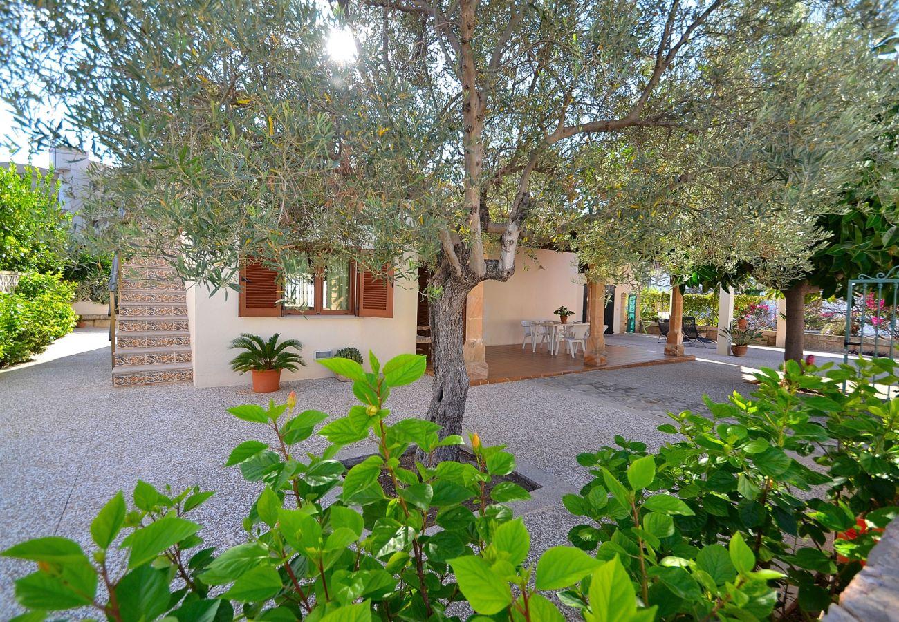 Ferienhaus in Port d´Alcudia - Villa BERNA ETV/7989 (Puerto Alcudia) 075