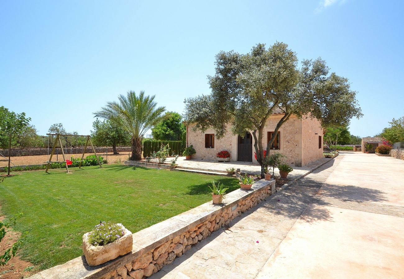 Mallorca, Apartment, Ferienhäuser, Fincas