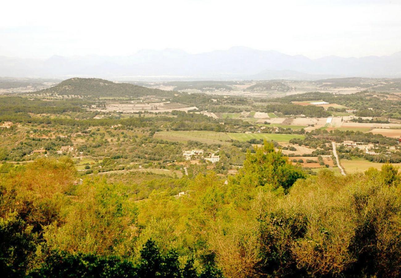 Finca in Petra - Sa Sinia Villa Petra 026