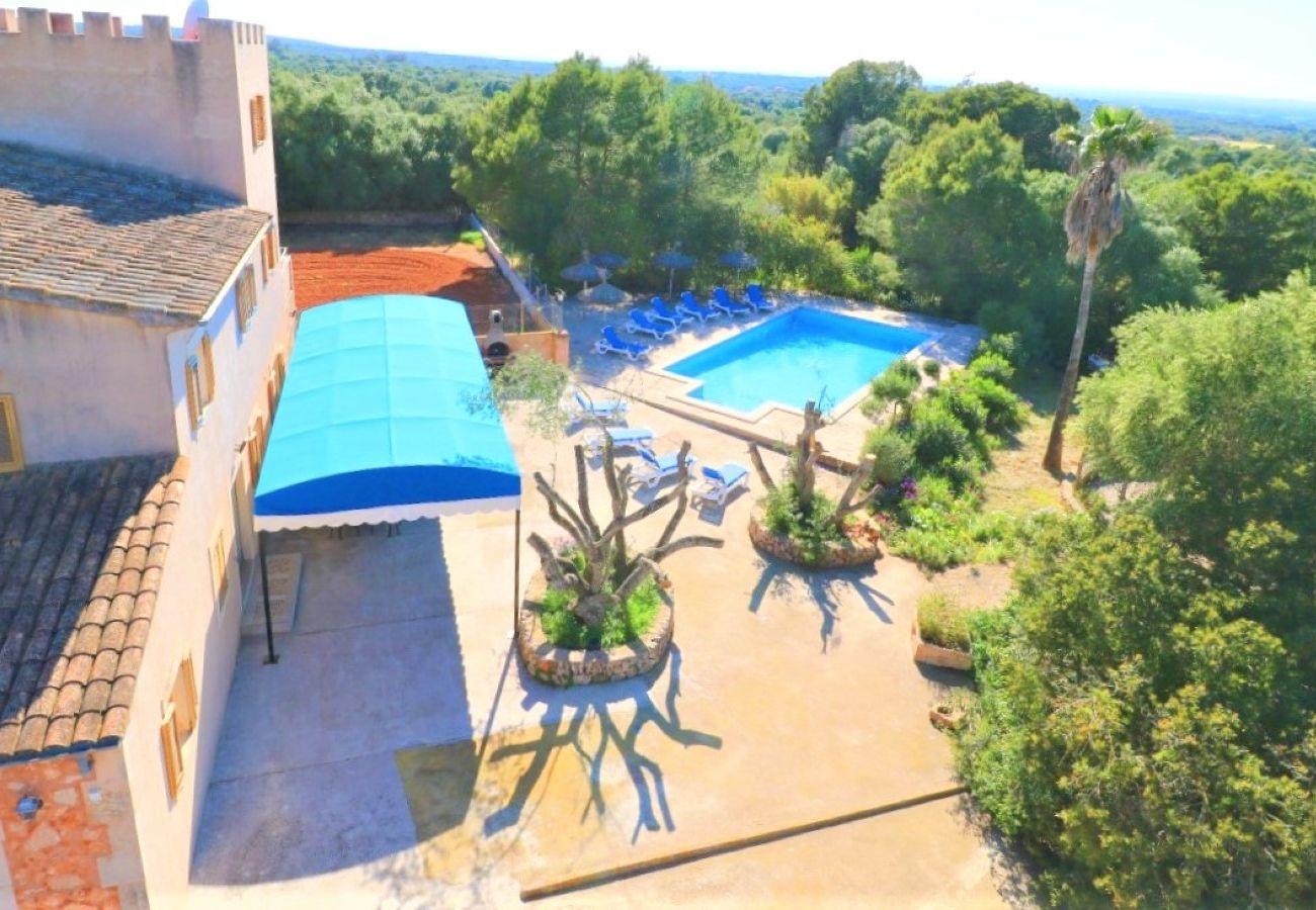 Schwimmbad, Natur, Urlaub, Sommer