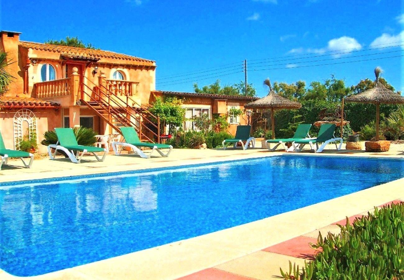 Schwimmbad, Natur, Urlaub, Sommer, Terrasse