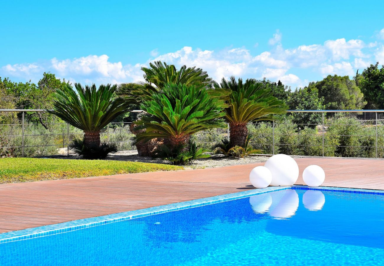 Pool der Finca Can Picafort