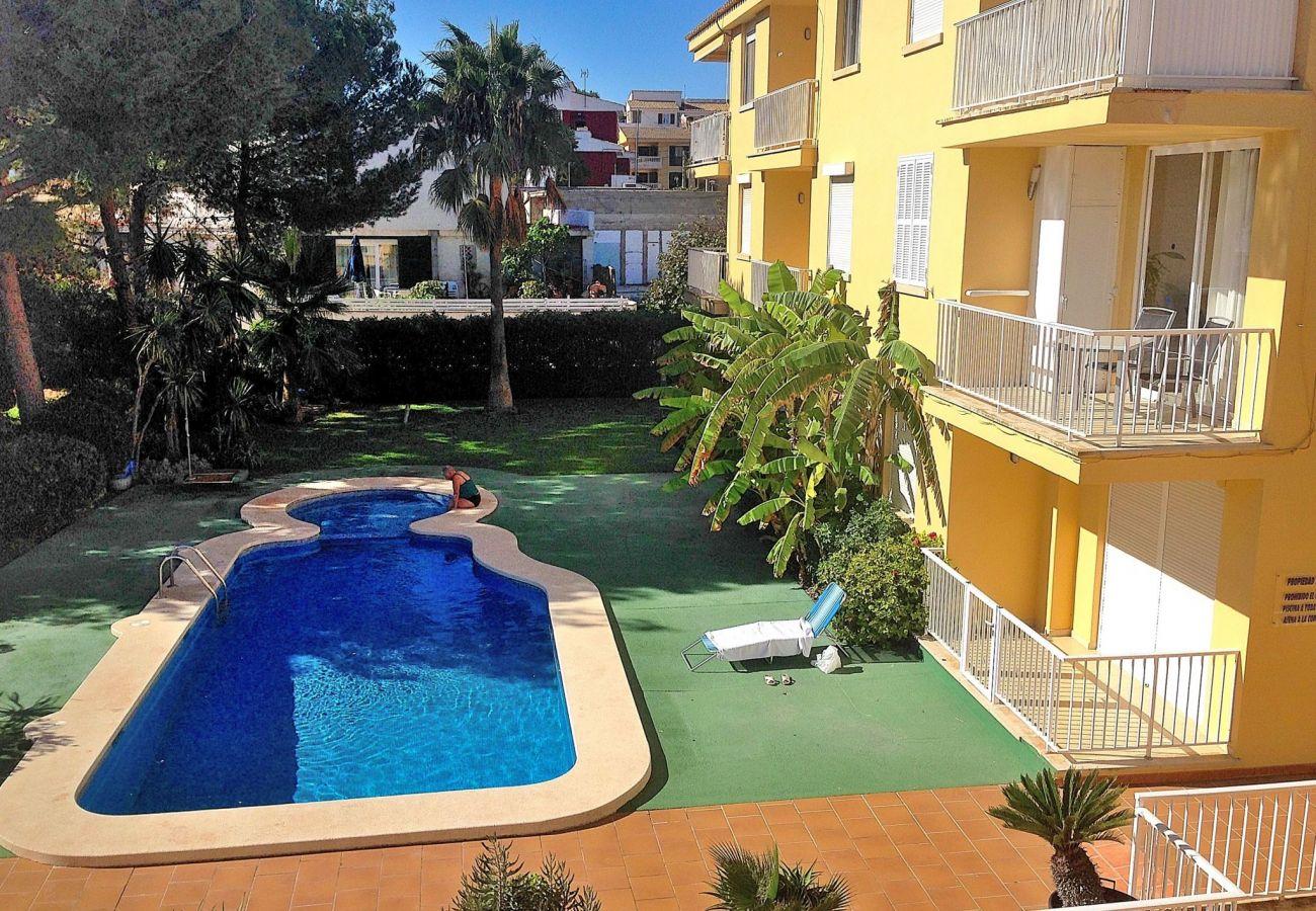 Pool der Ferienwohnung in Can Picafort