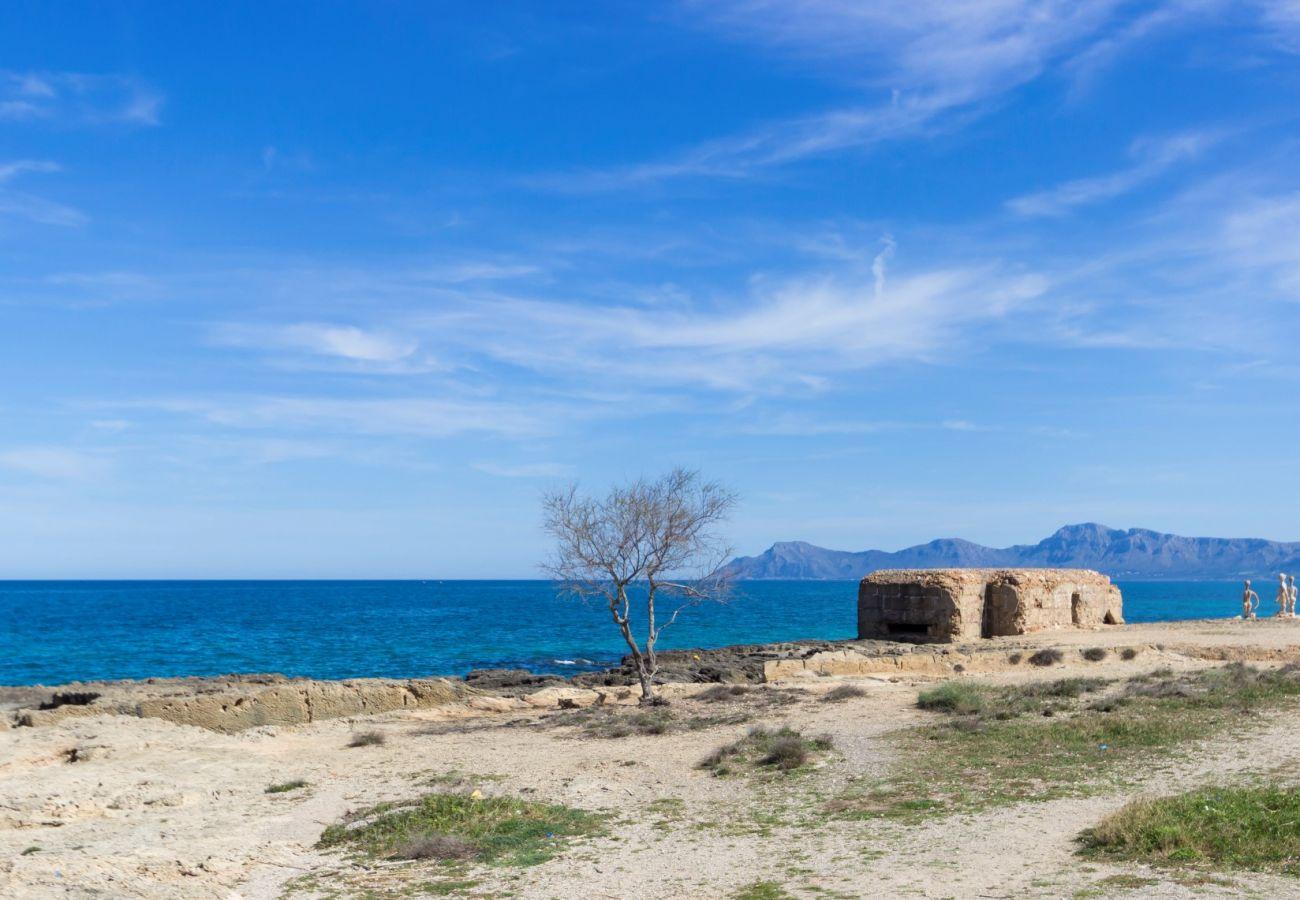 Foto von der Küste von can picafort