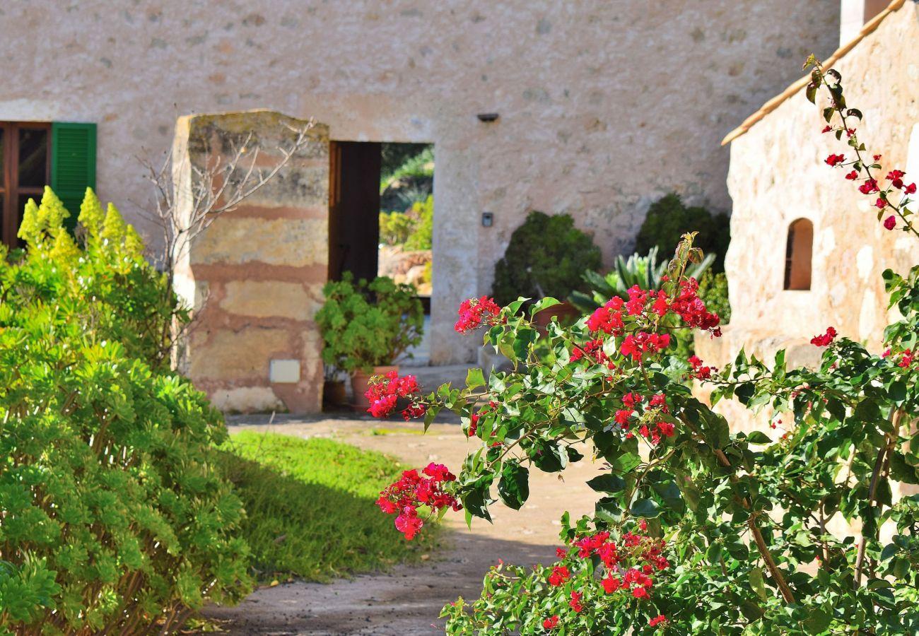 Garten der Finca in Alcudia