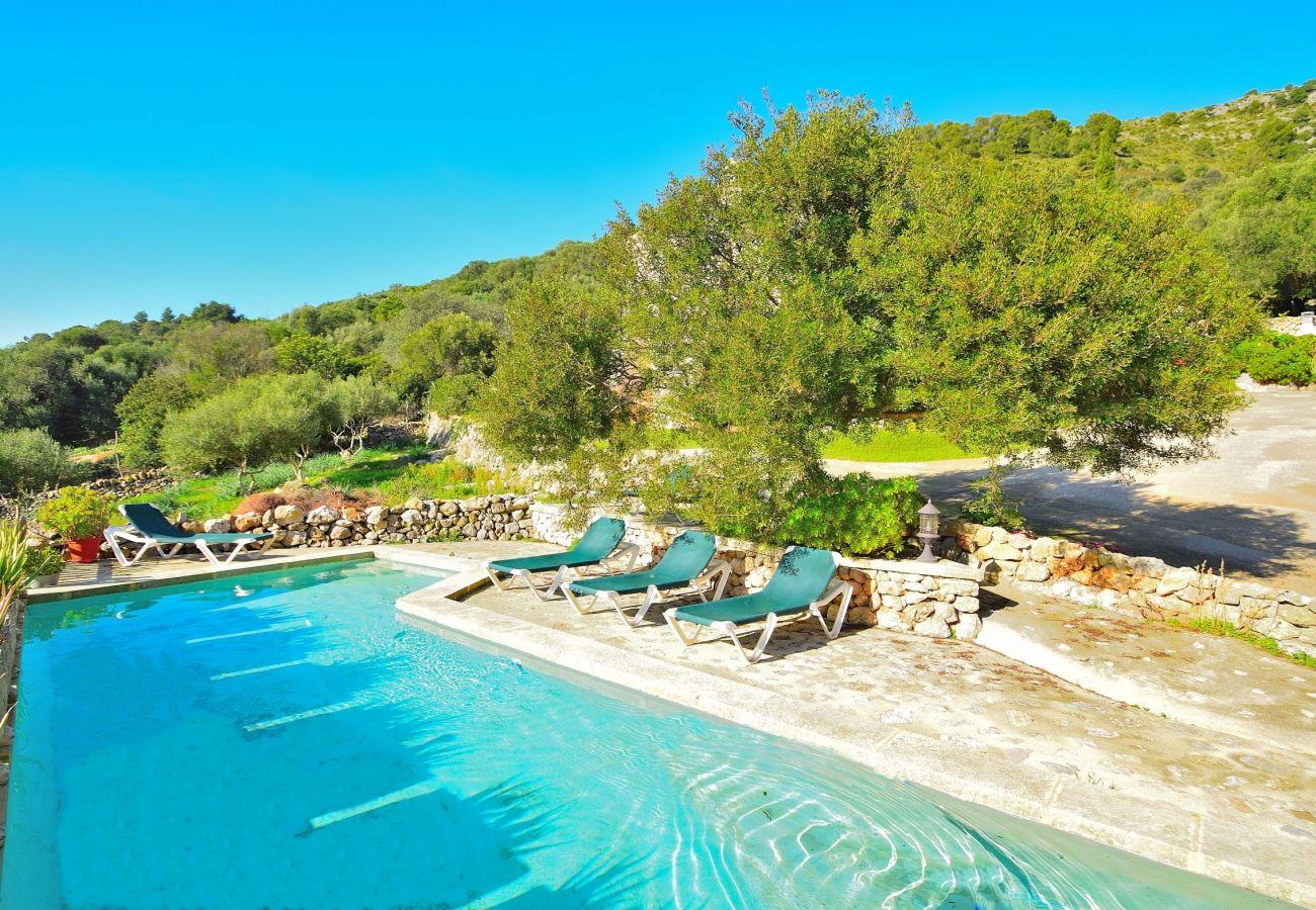 Pool der Finca in Alcudia