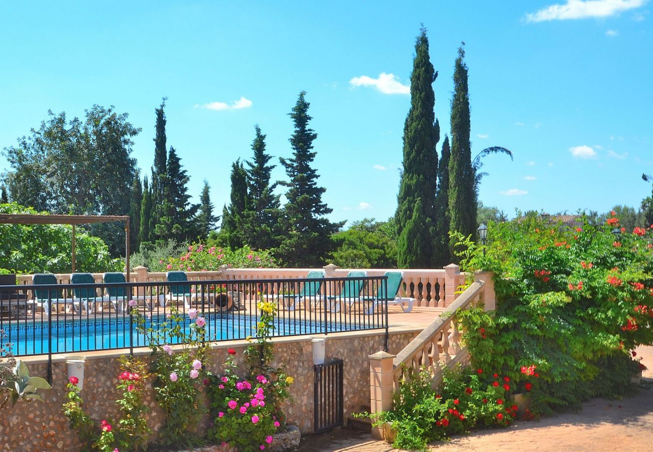 holiday house mallorca rent, holiday home mallorca, from private