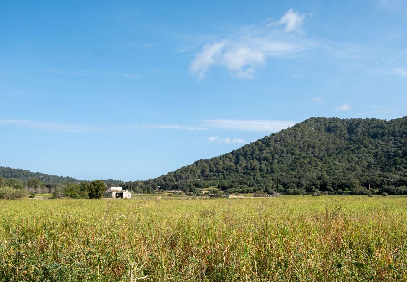 Country house in Sa Pobla - Ca'n Mussol finca Sa Pobla  040