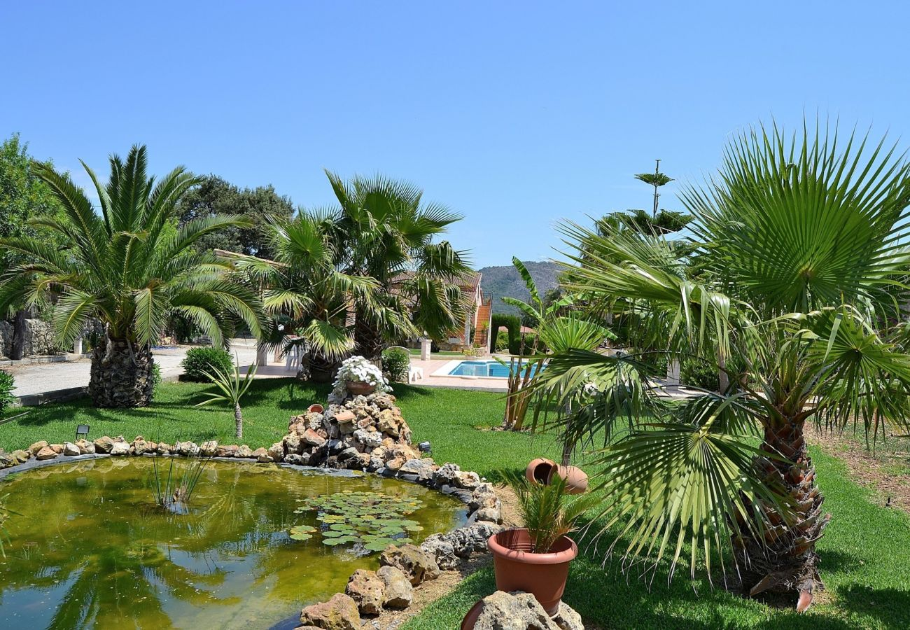 Photo of the pool of the finca in Inca Mallorca