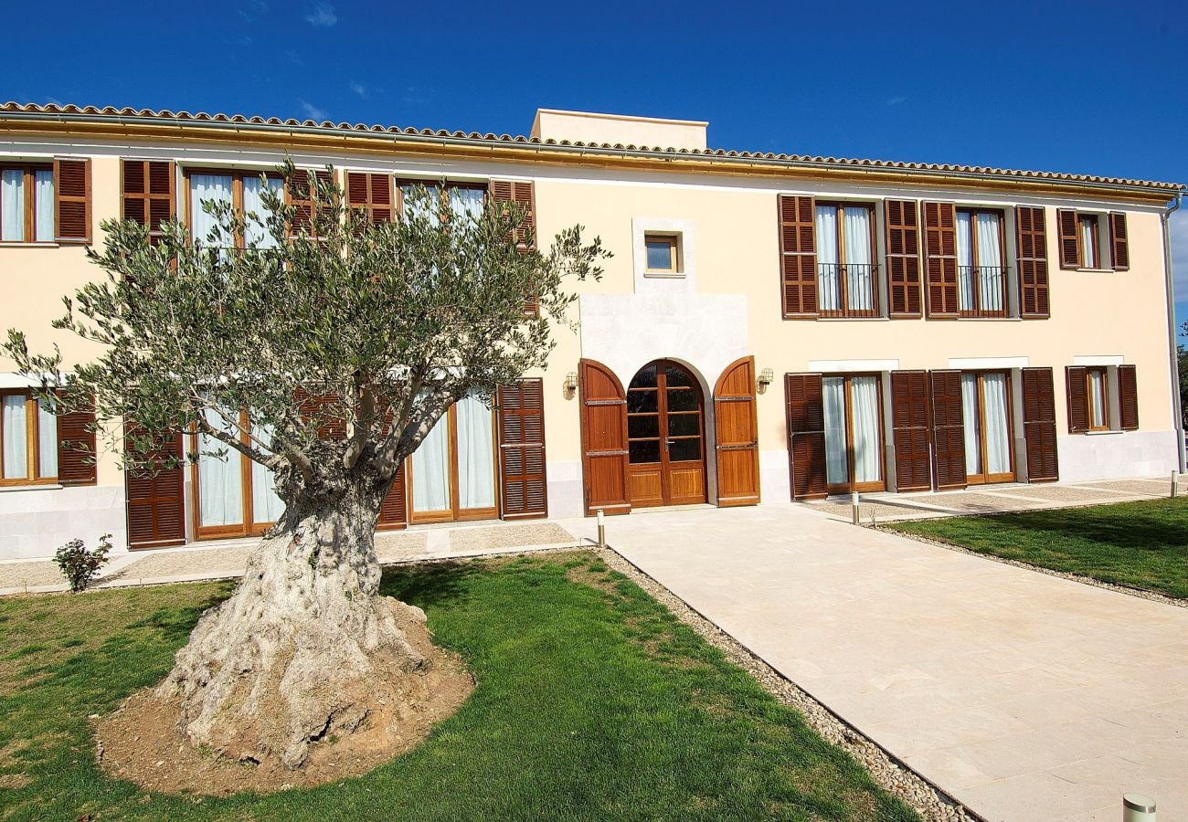Country house in Manacor - Hort de Conies Romaní Manacor 067