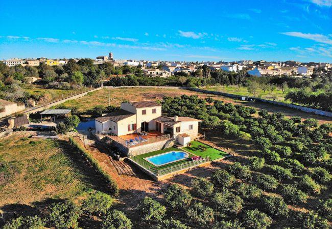 finca, villa, nature, peace and quiet, holidays