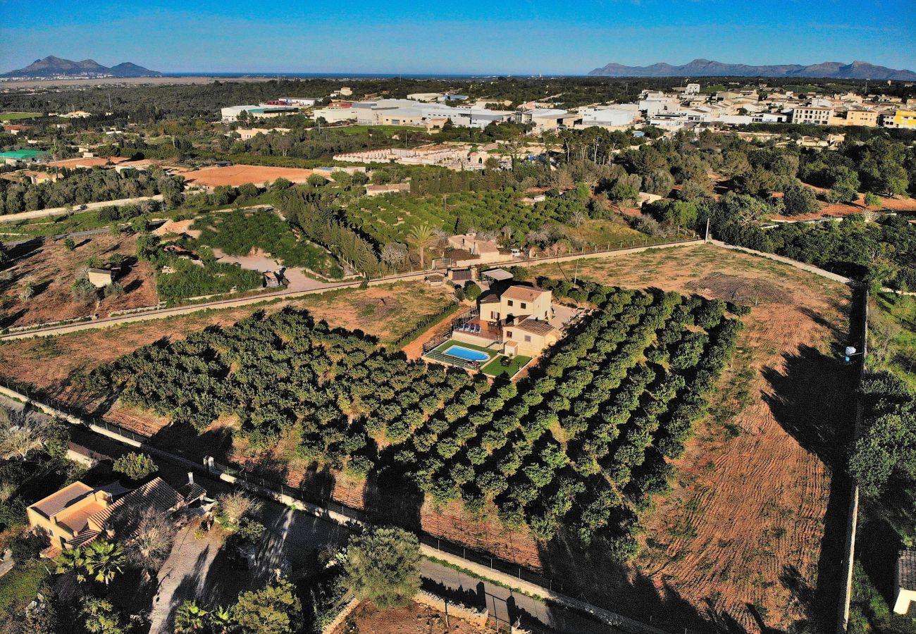 Country house in Muro - Els Tarongers Muro finca  081