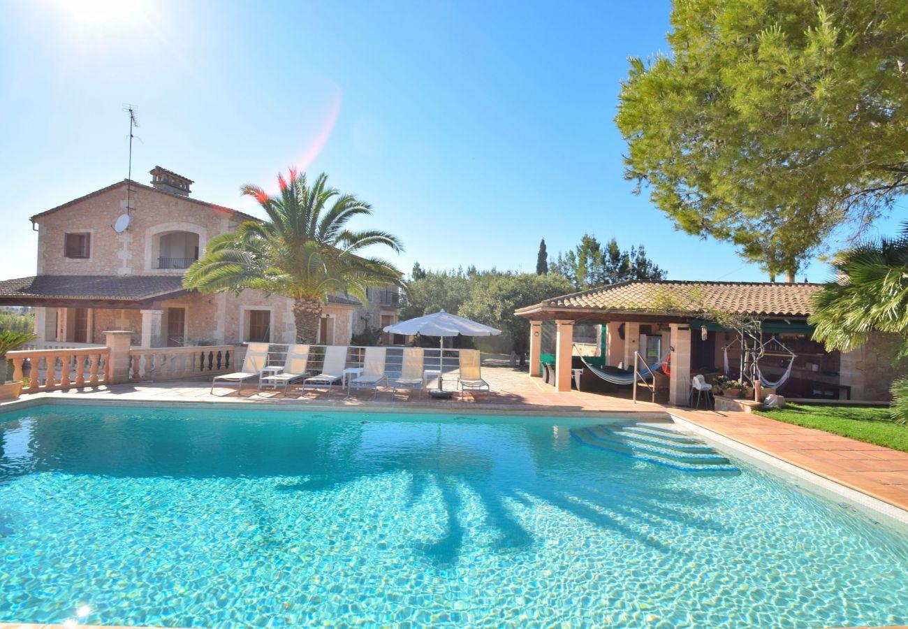 swimming pool, summer, holidays ,nature