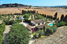 Country house in Santa Margalida - Castellet Finca Santa Margalida 120