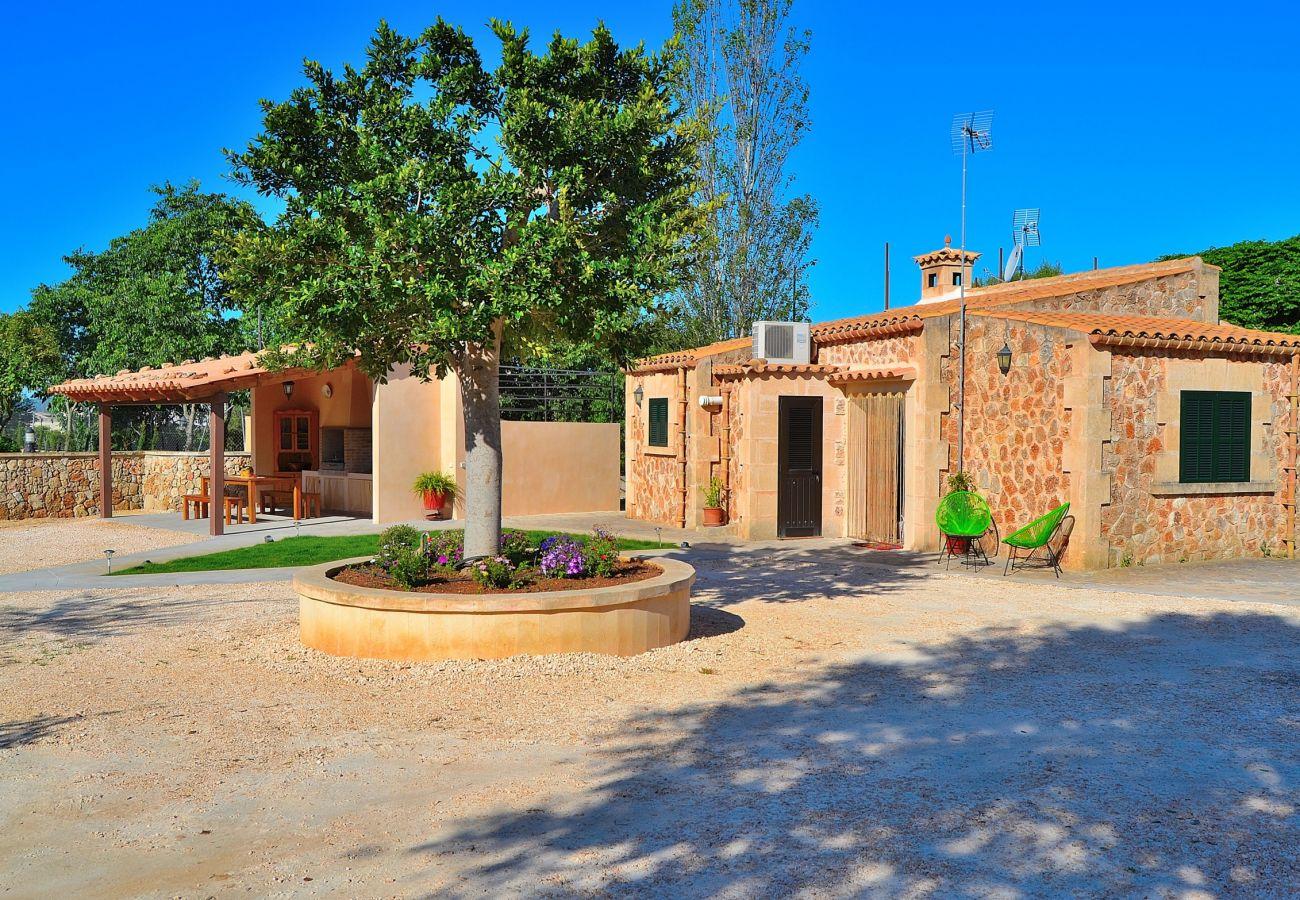 Country house in Llubi - S´ Era de Son Francesc Llubí Villa 123