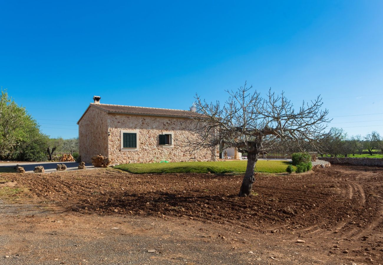 Country house in Sineu - Son Rossignol Sineu Finca 155
