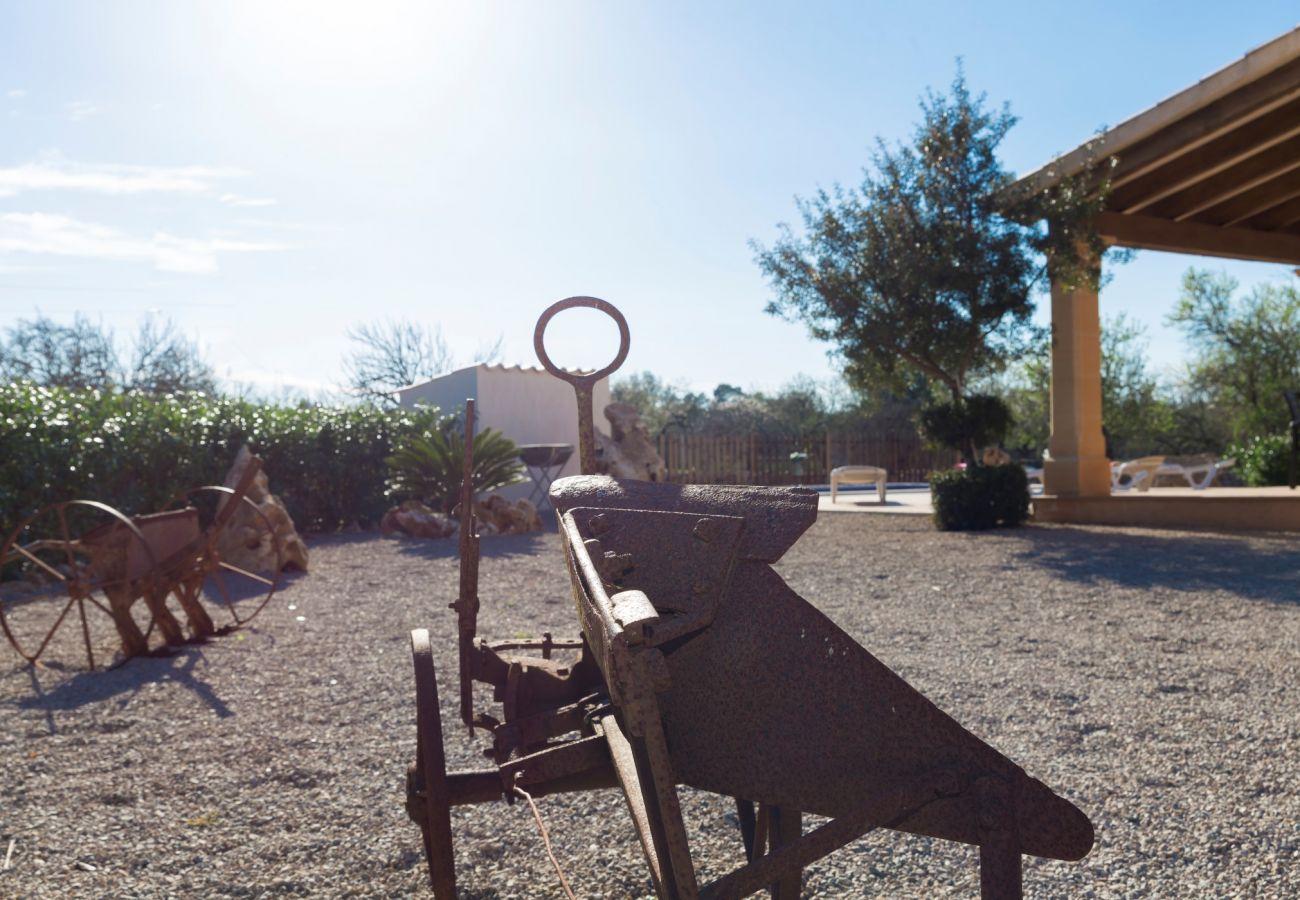 Country house in Sineu - Son Rossignol Sineu Finca 155