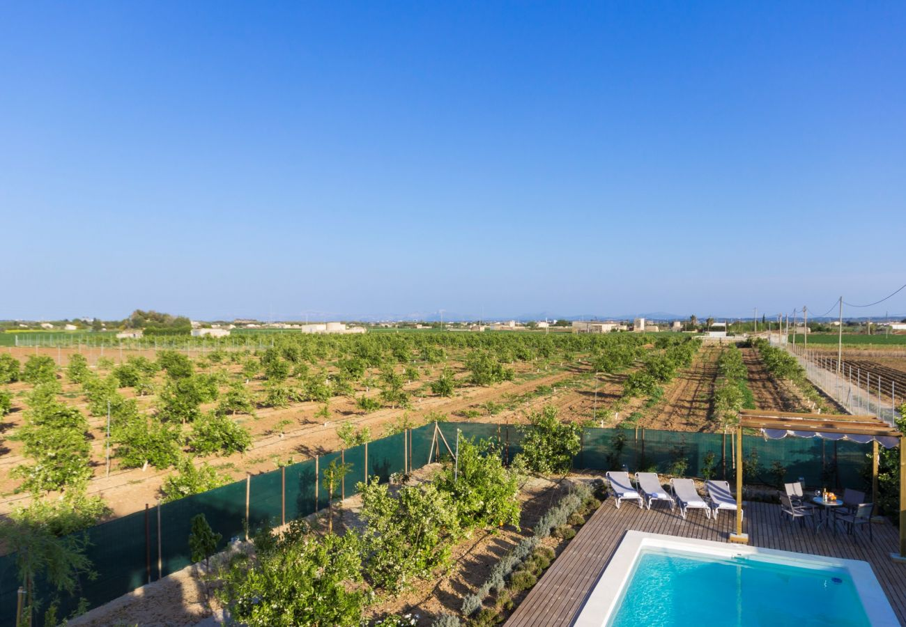 From 100 € per day you can rent your finca for the holidays in Mallorca