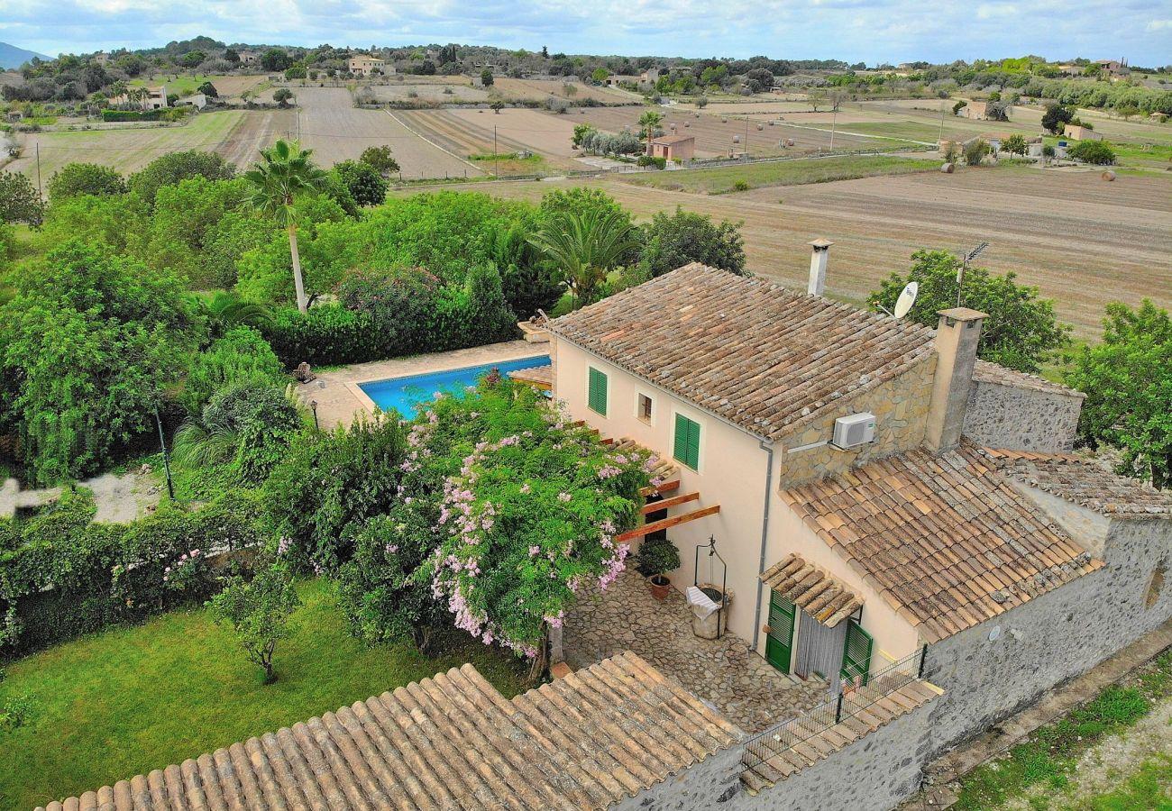 Country house in Sineu - Can Blanc finca Sineu 018